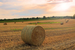 Hay bale at sunset. In Hungary Stock Photography