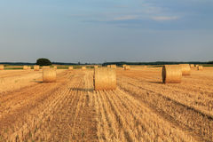 Hay bale at sunset Royalty Free Stock Images