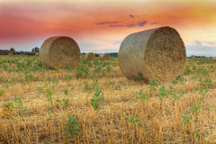 Hay bale at sunset. In Hungary.This photo was created HDR technique Stock Photography