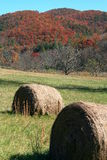 Hay Bale under Fall Foliage Stock Photos