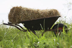 Hay Bale On Wheelbarrow Royalty Free Stock Photography
