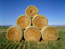 Hay Bales 1 Stock Image