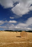 Hay Bales. View after the Conbine Harvester has been stock image