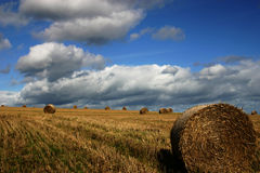 Hay bales. Bales in straw fields against blue sky stock photos