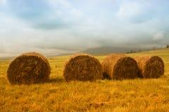 Free Hay Bales Stock Photography - 14545582