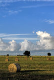 Hay bales. Beautifull picture of hay bales's field. Tuscan (Italy royalty free stock photo