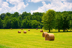 Hay Bales. In a green field with cloudy skies Stock Photography