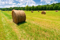 Hay Bales. In a green field with cloudy skies Royalty Free Stock Photography