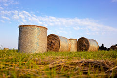 Hay bales. Landscape with hay bales on the grass - sunset Royalty Free Stock Photography