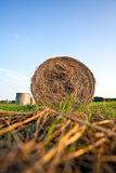 Hay bales. Landscape with hay bales on the grass - sunset Stock Images