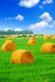 Hay bales Stock Photos