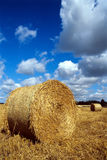 Hay Bales. royalty free stock photography