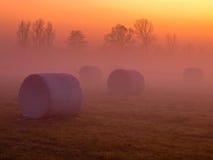 Hay bales. During orange sunset Stock Photos