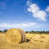 Hay Bales. Under a cerulean blue sky means summer in Canterbury, New Zealand royalty free stock photos