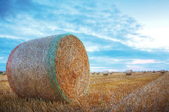 Hay Bales. Image of a field with hay bales at the sunset Royalty Free Stock Photography