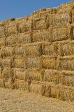 Hay bales Royalty Free Stock Image