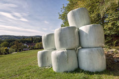 The hay bales Royalty Free Stock Image