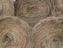 Hay Bales. Round bales of hay. Fish Creek Park, Calgary, Alberta, Canada Royalty Free Stock Image