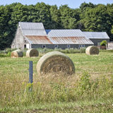 Hay Bales. Around a rustic barn with a steel roof Royalty Free Stock Photos