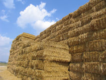 Hay bales 3 Stock Photo