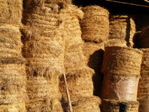 Free Hay Bales Royalty Free Stock Images - 3491439