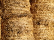 Free Hay Bales Royalty Free Stock Photos - 3491488