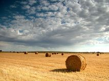 Free Hay Bales Stock Photography - 388972
