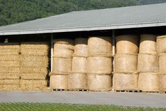 Free Hay Bales Stock Photography - 5102282