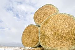 Hay bales Royalty Free Stock Photos