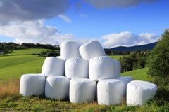Free Hay Bales Stock Photo - 59515130
