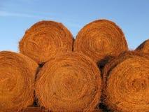 Free Hay Bales Royalty Free Stock Image - 8118246