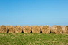 Hay Bales in Afternoon Sunshine against Horizon Stock Image