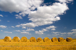 Hay bales on the agricultural field after summer harvest Royalty Free Stock Photography