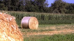 Hay bales stock video