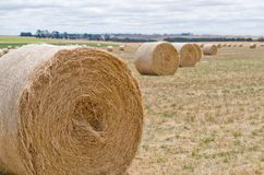 Hay bales. Agriculture field with cloudy sky stock photos