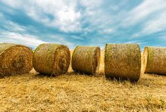 Hay Bales Agriculture Scenery Royalty Free Stock Image