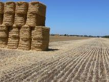 Hay Bales após a colheita Imagens de Stock