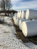 Hay bales. At the arable Royalty Free Stock Photo