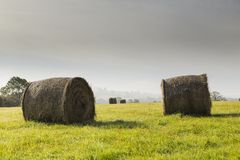 Hay Bales In Autumn. Royalty Free Stock Images