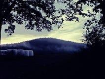 Hay Bales av den dimmiga ängen royaltyfria bilder