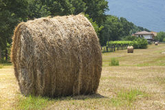 Hay Bales Bale Field Countryside Royalty Free Stock Images
