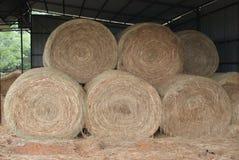 Hay Bales In The Barn redondo fotos de archivo libres de regalías