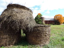 Hay Bales and Barn. Stacked Hay bales in view of the barn with fall foliage Stock Photos