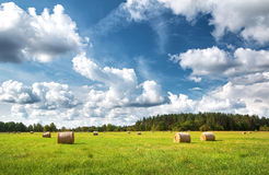 Hay bales with blue sky and fluffy clouds Royalty Free Stock Photo