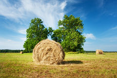 Hay bales with blue sky Royalty Free Stock Photography