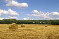 Hay Bales & Chiltern Hills. Bales of hay in a field with the Chiltern Hills in the background on a summer's day Stock Photos