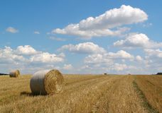 Hay bales in countryside Royalty Free Stock Photo