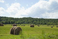 Hay bales on countryside field Stock Photos