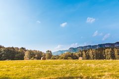 Hay bales in countryside field Stock Images