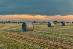Hay bales in the countryside Northern Italy Royalty Free Stock Photo